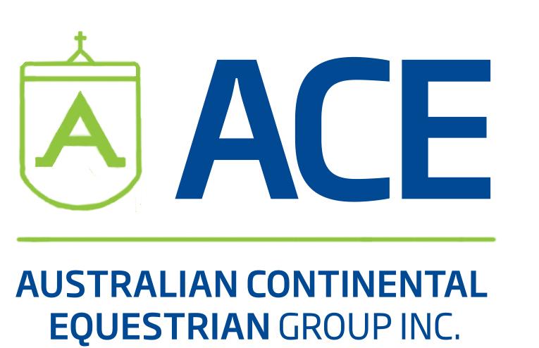 ACE Group Inc.